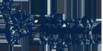 logo Liberty